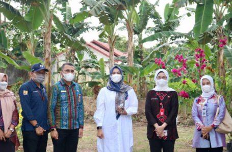 TP PKK Kabupaten Banjar Akan Maksimalkan Potensi Kebun Indrasari